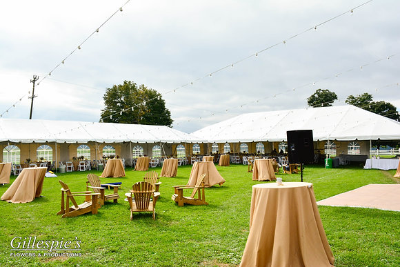 20' Wide Fiesta Frame Tents