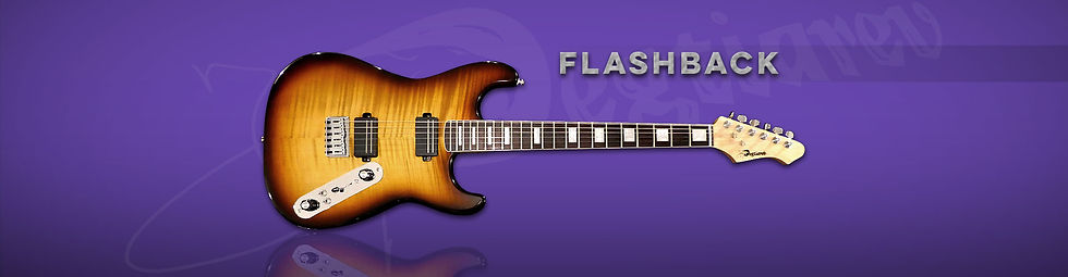 FlashBack Entiere.jpg