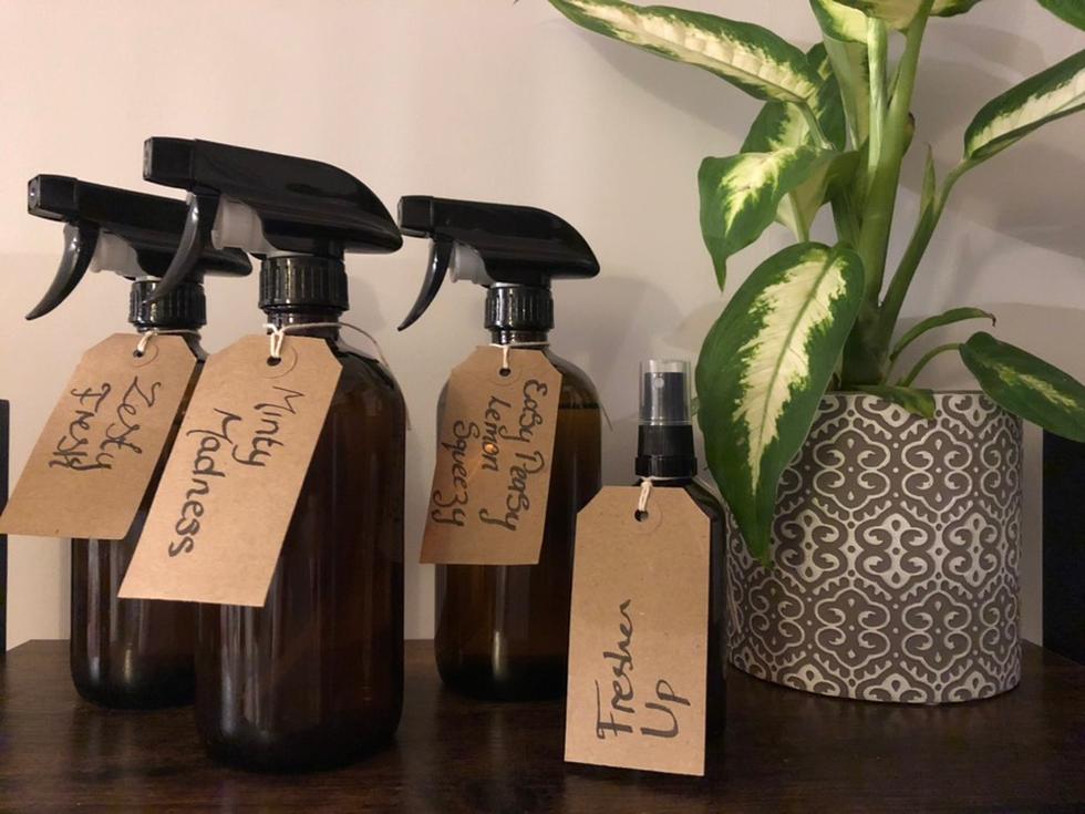 Eco Domestics Products.png