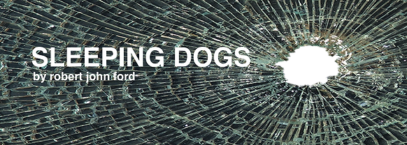 SLEEPING DOGS- reading FB banner.png