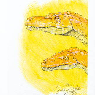 Early Dinosaurs