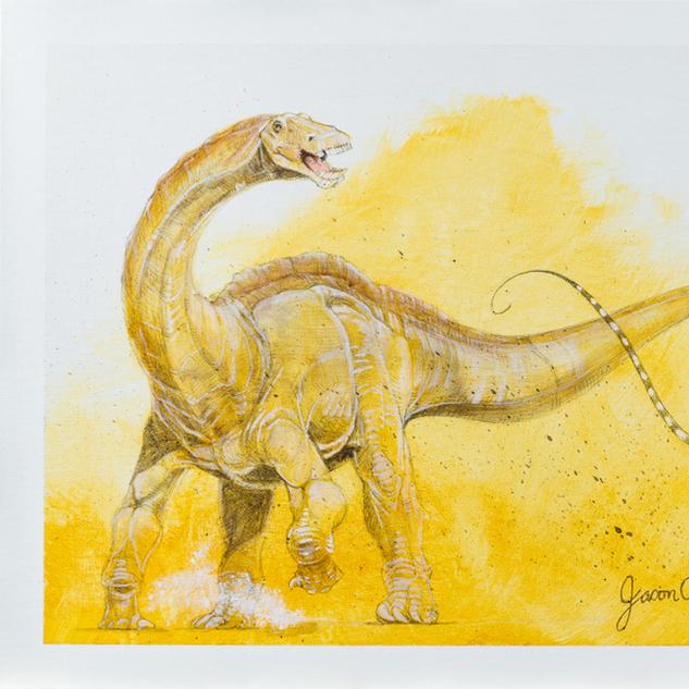 Bull Apatosaurus