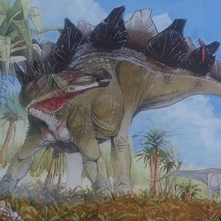 Stegosaurus, Brontosaurus and Ceratosaur