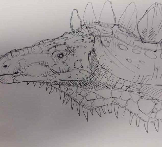 Stegosaur Sketch