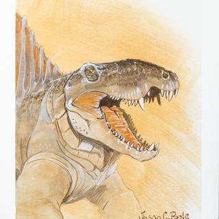 Dimetrodon Portrait