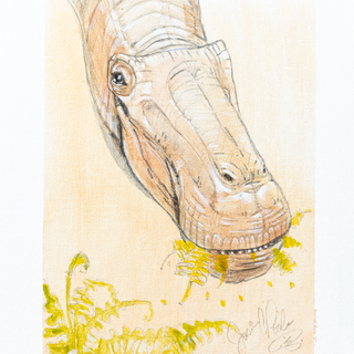 Titanosaur Portrait