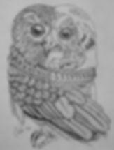 Machanic Owl