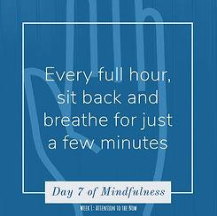 DAY 7 - breathe.JPG