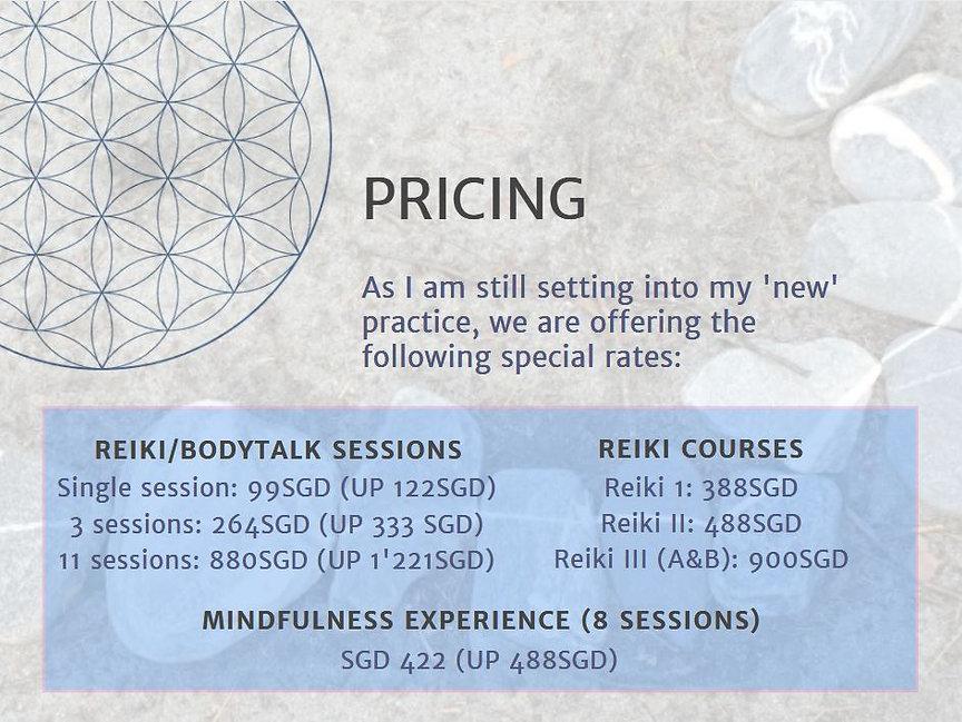 Pricing Website.JPG