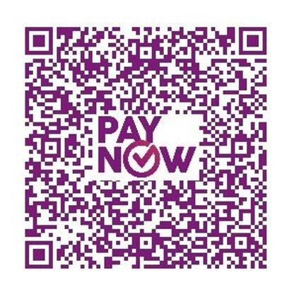 paynow new.jpg