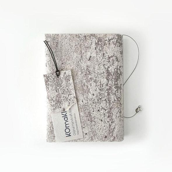 SILVER RAIN BOOK COVER