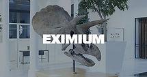 eximium.jpg