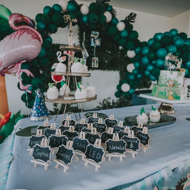 Balloon Garland   Party Decoration Perth