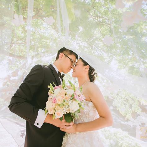 Lily & Yan