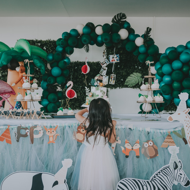 Balloon Garland | Party Decoration Perth