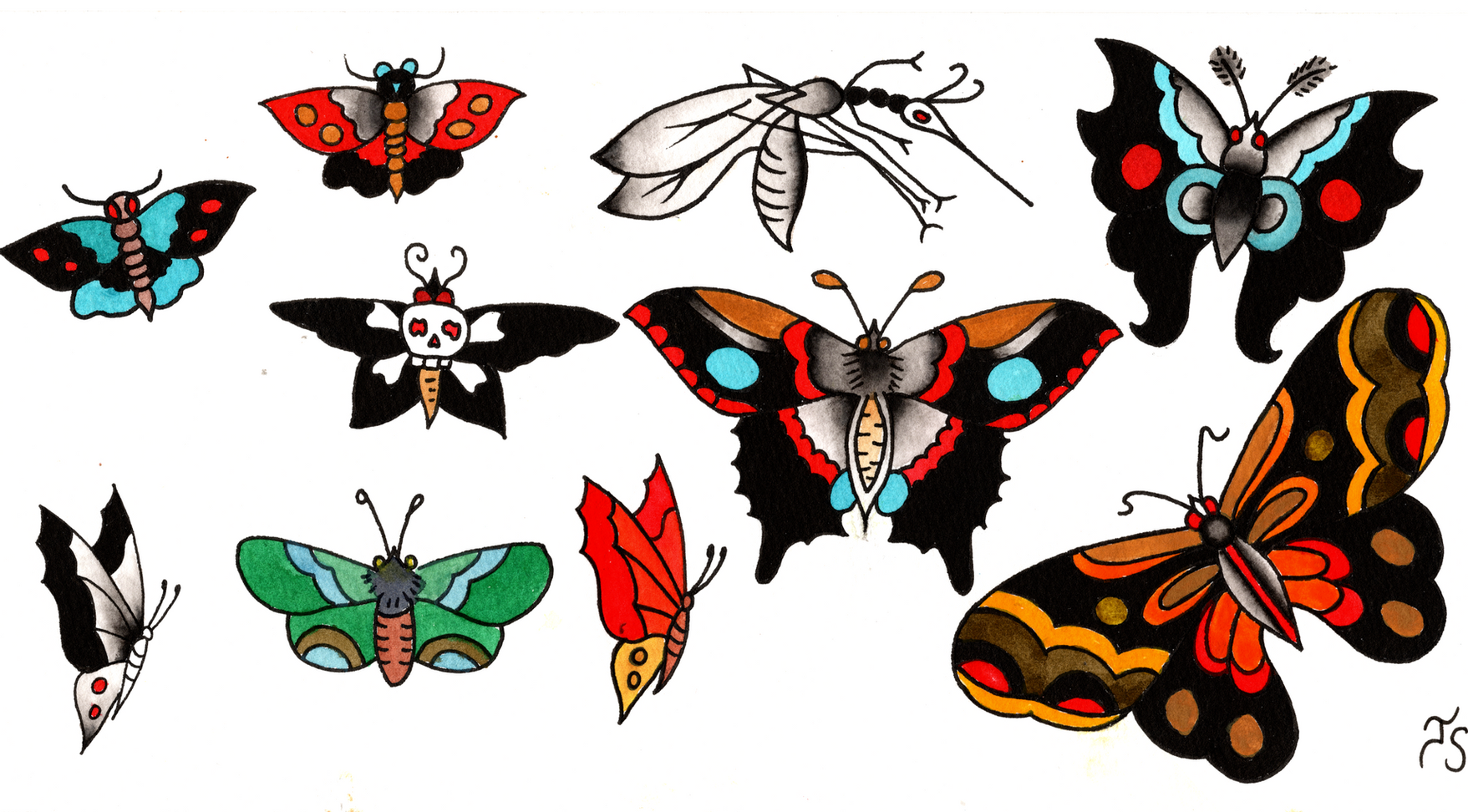 moth and butterfly.png