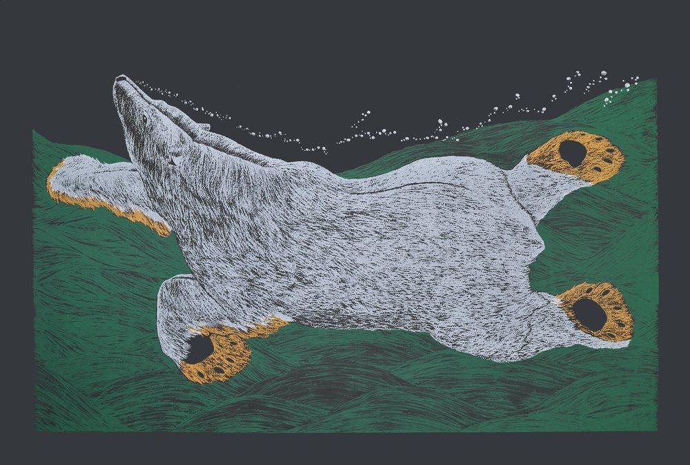 Swimming Bear (2016)