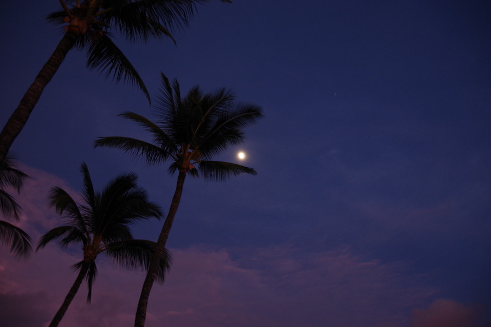 Hawaii in 2019.