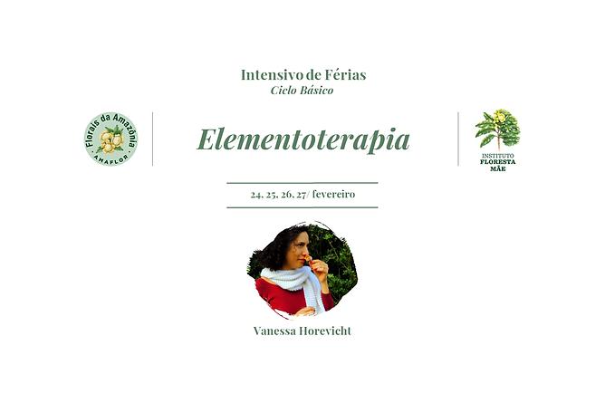 Capa Curso Elemtentoterapia - Florais da