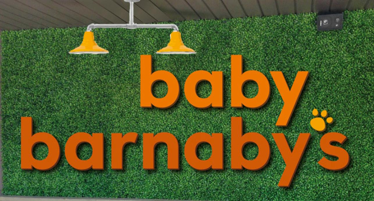Baby Barnaby's