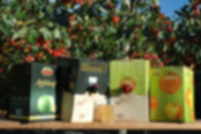 Bag in Box Kartons, Fruchtsaft, Kartons, Bag in Box, Obsthof Gestorf Fruchtsäfte, Saftboxständer