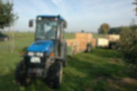 Schmalspur Schlepper mit Pflückezug, Apfelernte, Großkistn, Plantage