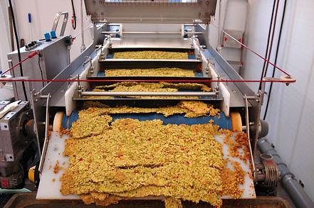 Siebbandpresse beim pressen. Bandpresse, Presse, Äpfel pressen, Trester,