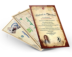 Diploma personalizata standard (1-5 buc)