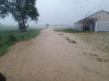 Schwere Unwetter im Hürmer Gemeindegebiet mit Aufräumarbeiten in Hürm und Inning