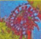 Heurignkalender Krems Kellergasenfest Marillenfest Wachau