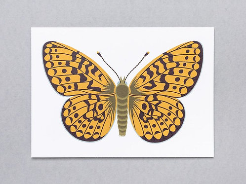 Fritillary Butterfly Greeting Card