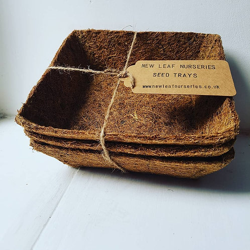 Coir Seed Trays