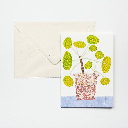 Bobble Plant Card