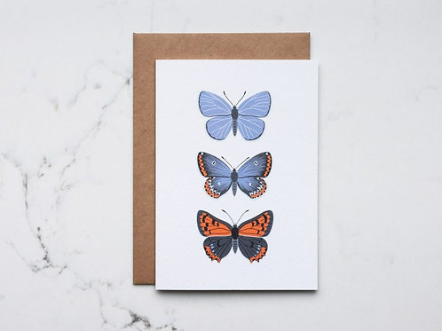 Butterfly Trio Greeting Card