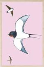 Swallow Wooden Postcard