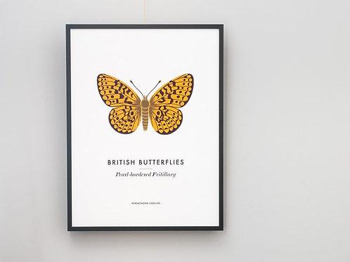 Fritillary Butterfly Giclee Print