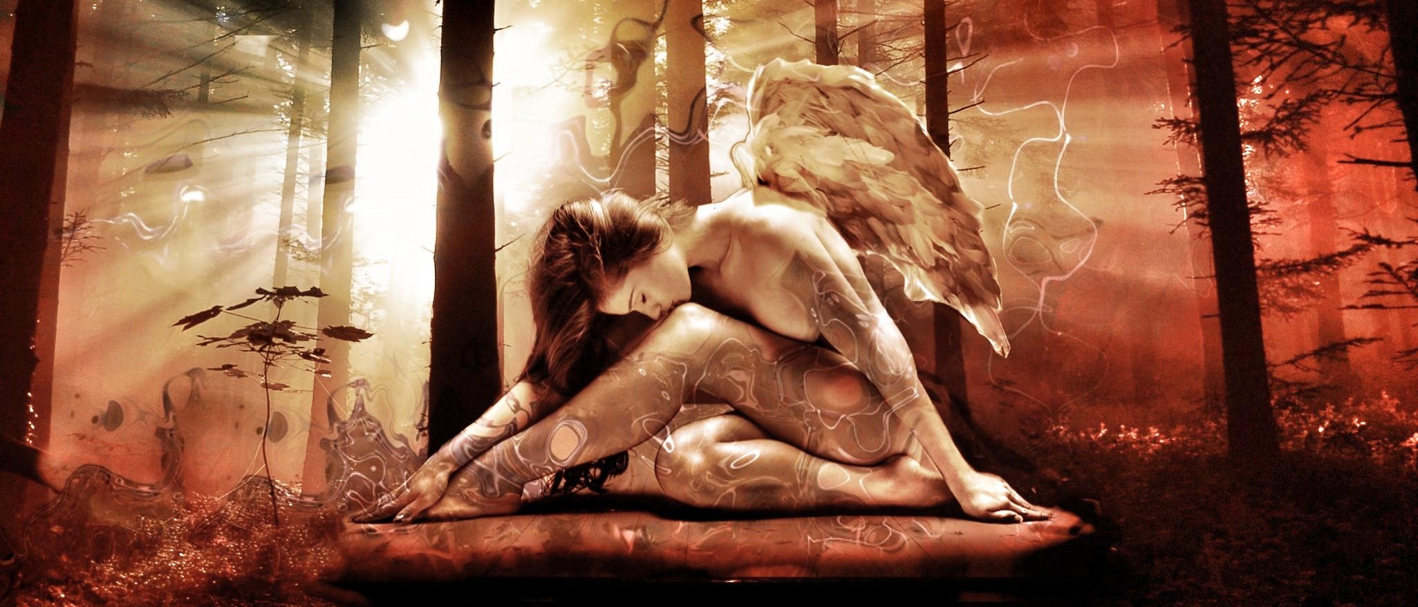 Engel im Wald