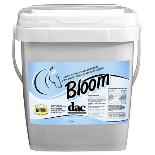 Bloom 20 #