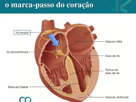 O nó sinoatrial é o marca-passo do coração