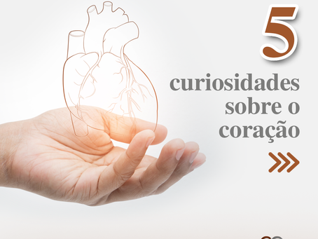 5 curiosidades sobre o coração