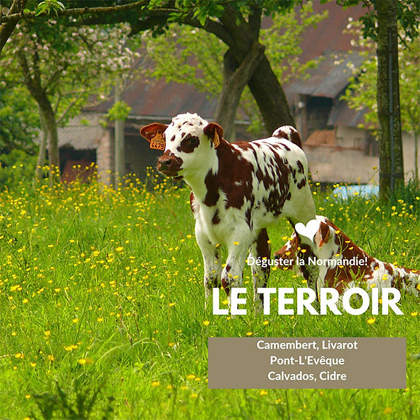 Normandie-le-terroir.jpg