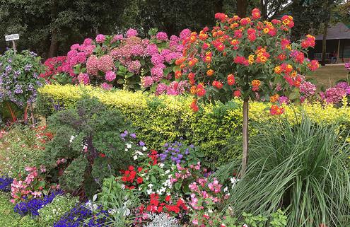 jardin-dior-granville.jpg