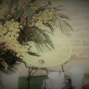 Chambre d'hôtes La Boisée 3 personnes Les Prunelles à Pupillin Vacances Jura Arbois Randonnée nature