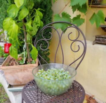 cote-azur-chambre-hotes-piscine5-WEB.jpg