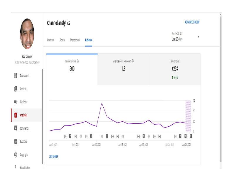 YouTube Analytics-1-28-21_Audience.jpg