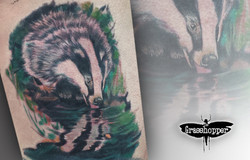 badger saimon.jpg