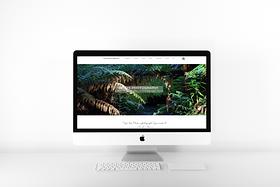 desktop computer apple mock up website