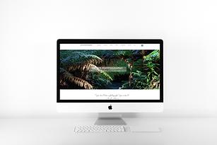 desktop apple computer imac website design mock up