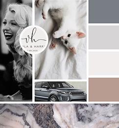 brand mood board modern brand style grey marble kitten woman