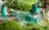 Hummingbird crop 50_Q2A3994 .jpg